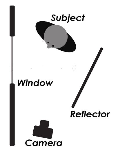 Windowlighting