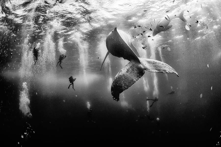 national geographic traveler photo contest Anuar Patjane Floriuk
